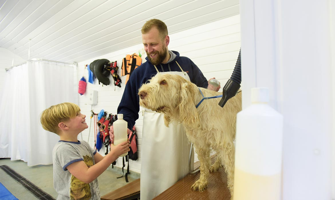 dog wash and blow dry at Quiet Acres